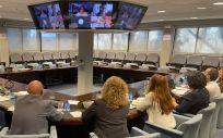 Reunión del grupo de expertos del Consejo General de Enfermería para analizar el coronavirus (Foto: CGE)