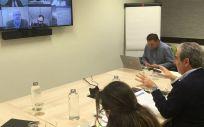 Reunión de los representantes farmacéuticos online. (Consejo de Farmacéuticos)