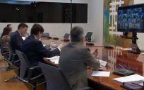 El Gobierno comunica a los presidentes de las Comunidades Autónomas que se prorrogará el Estado de Alarma (Foto. La Moncloa)