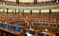 Pleno del Congreso de los Diputados (Foto: Flickr PSOE)