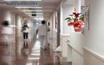 Profesionales sanitarios (Foto. La Rioja)