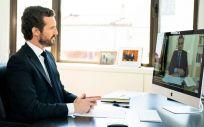 Pablo Casado, presidente del PP, durante la videoconferencia con Pedro Sánchez (Foto: Flickr PP)