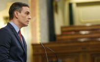 Pedro Sánchez, presidente del Gobierno, durante su intervención en el Congreso (Foto. Congreso de los Diputados)