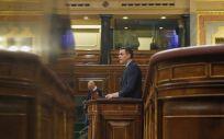 El presidente del Gobierno, Pedro Sánchez, interviene en el Congreso (Foto. Congreso de los Diputados)