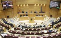 Pleno del Senado, cámara alta de las Cortes españolas. (@Senadoesp)
