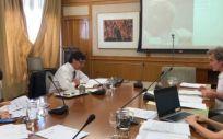 Reunión telemática entre el Ministerio de Sanidad y la Consejería de Salud de la Junta de Andalucía. (Foto. Ministerio de Sanidad)