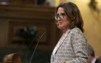 Teresa Ribera, ministra de vicepresidenta cuarta del Gobierno (Foto: Flickr PSOE)