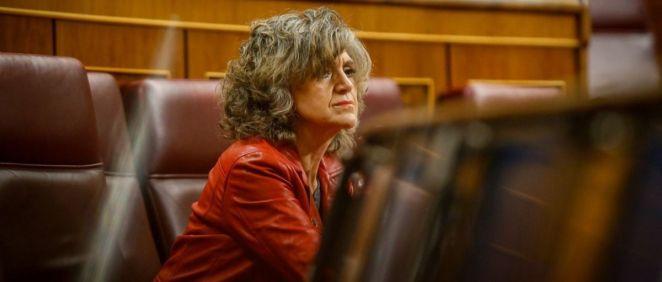 María Luisa Carcedo, diputada del PSOE, durante un pleno en el Congreso (Foto: Flickr PSOE)