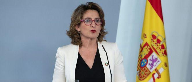Teresa Ribera, vicepresidenta cuarta del Gobierno y ministra de Transición Ecológica y Reto Demográfico (Foto: Pool Moncloa / Borja Puig de la Bellacasa)