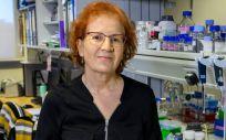 Margarita del Val, virologa del Csic. (Foto: Csic)