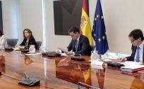Conferencia presidentes autonómicos. (Foto. Pool Moncloa. José María Cuadrado)