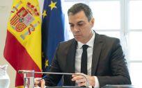 El presidente del Gobierno, Pedro Sánchez, durante la Conferencia de Presidentes (Foto: La Moncloa)