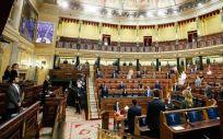 Pleno del Congreso de los Diputados durante el debate de la prórroga del estado de alarma (Foto: Congreso)
