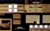 Superficie del chip de la UPF. (Foto: UPF)
