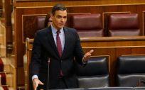 El presidente del Gobierno, Pedro Sánchez, interviniendo en el Congreso de los Diputados (Foto: Flickr PSOE)