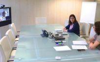 Encuentro telemático para la organización de los cursos (Foto. Sescam)