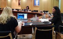 Reunión del grupo de trabajo del Plan de Abordaje de Terapias Avanzadas (Foto: Ministerio de Sanidad)