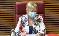 La consejera de Sanidad Universal de la Generalitat Valenciana, Ana Barceló. (Foto. Flickr Corts Valencianas)