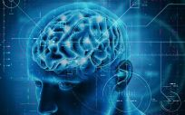 Identifican una molécula de señalización que podría ayudar a prevenir el Alzheimer (Foto. Freepik)