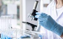 La comunidad científica continúa realizando avances frente al coronavirus (Foto. Freepik)