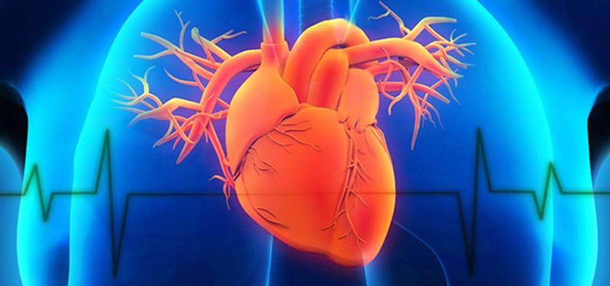Científicos imprimen la bomba del corazón humano en 3D