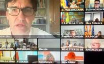 Consejo Interterritorial celebrado por videoconferencia (Foto: Ministerio de Sanidad)