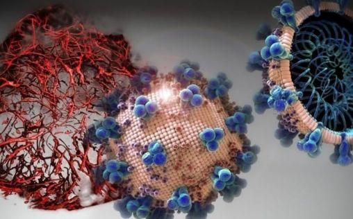 La inmunidad de las personas con Covid-19 leve o moderado puede durar hasta cinco meses