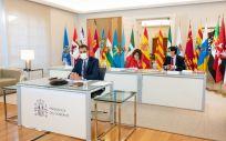 Una imagen de la reunión telemática con los presidentes autonómicos. (Foto. Pool Moncloa / Borja Puig de la Bellacasa)