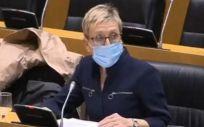 La portavoz adjunta en la Comisión de Sanidad, Carmen Andrés (Foto. GPS)