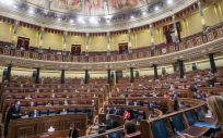 Pleno del Congreso de los Diputados (Foto: PSOE-Eva Ercolanese)