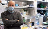 Piero Crespo, director del Instituto de Biomedicina y Biotecnología de Cantabria (Foto. EP)