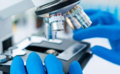 Investigadores trabajan en el desarrollo de una vacuna de nanopartículas para la Covid-19