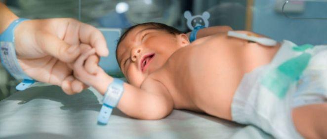 Bebé recién nacido (Foto. Freepik)