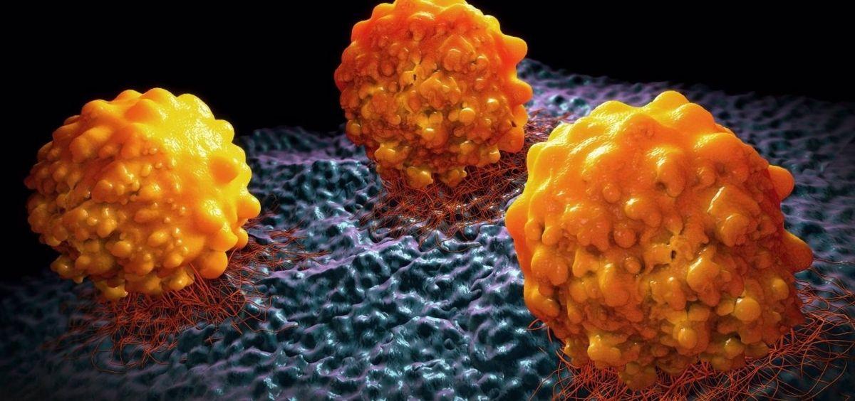 Desarrollan una nueva tecnología que predice la efectividad de la quimioterapia