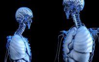 Implantes en 3D imitan la función natural del hueso