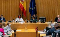Reunión de la Comisión de Sanidad del Congreso de los Diputados, con la intervención de Carolina Darias (Foto: Congreso)