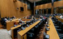 Reunión de la Comisión de Sanidad del Congreso de los Diputados (Foto: Congreso)