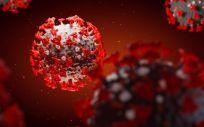 3D illustration, coronavirus, covid 19 (Foto. EP  MAKSIM TKACHENKO)