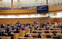 La bancada socialista aplaude la aprobación de la Ley de regulación de la Eutanasia. (Foto. GPS Senado)