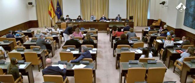 Reunión de la Comisión de Derechos Sociales (Foto: Congreso)
