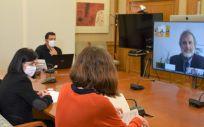 Instante del acto virtual celebrado en el Ministerio de Sanidad (Foto: M.Sanidad)