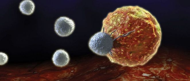 Desarrollan una nueva membrana de filtro de agua que hace que los virus sean inofensivos