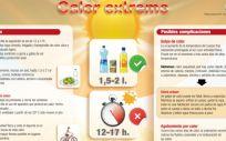 Infografía para la prevención de problemas causados por las altas temperaturas. (Foto Consejo General de Enfermería)