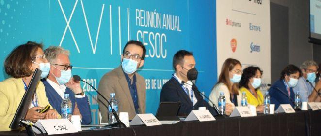 XVIII Reunión Anual de la Sociedad Española de Superficie Ocular y Córnea (Foto. SESOC)