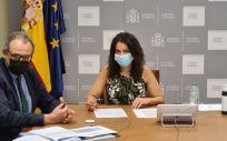 La secretaria de Estado de Sanidad, Silvia Calzón, en el pleno del PNSD. (Foto Ministerio de Sanidad)
