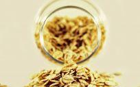 Cereales integrales (Fotos: Pixabay)