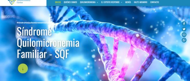 Página web de la Asociación de Quilomicronemia Familiar. (Foto. ConSalud.es)