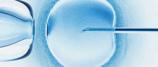 El 25 de julio se celebra el Día Mundial del Embriólogo (Foto. Air Liquide Healthcare España)