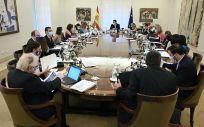 Consejo de Ministros. (Foto. Pool Moncloa. Borja Puig de la Bellacasa)