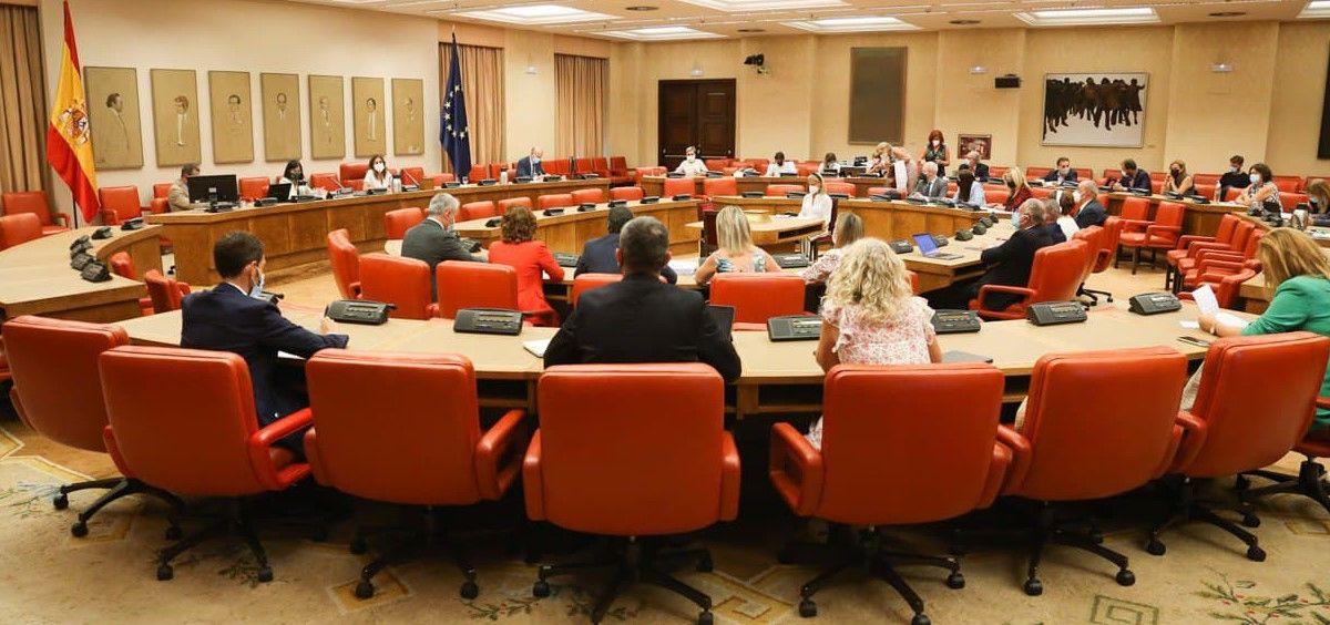 Instante de la Comisión de Sanidad del Congreso de los Diputados (Foto: Congreso)